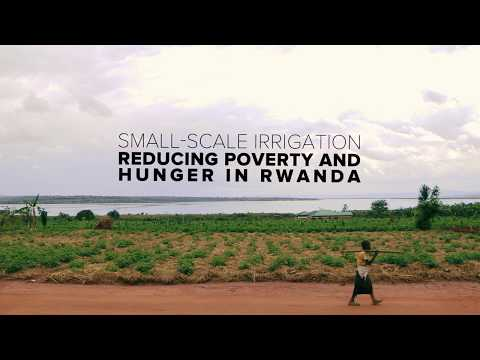 WATCH: Small-Scale Irrigation - Reducing poverty and Hunger in Rwanda