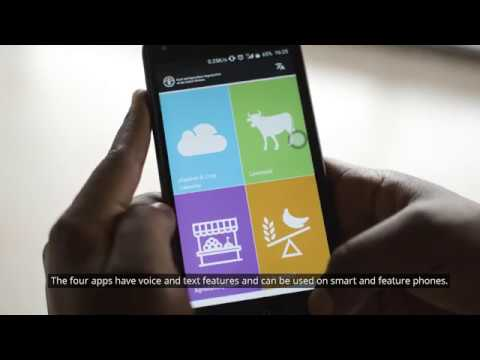 WATCH: Unleashing the potential of Africa's youth through innovation in agriculture